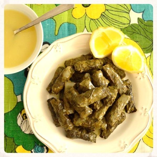 Ντολμαδάκια με αμπελόφυλλα και σάλτσα αυγολέμονο